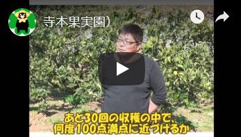 有限会社寺本果実園さんへのインタビュー動画