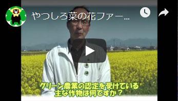 やつしろ菜の花ファーム987さんへのインタビュー動画
