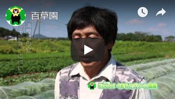 百草園さんへのインタビュー動画のサムネイル