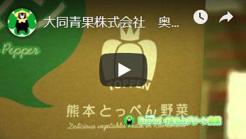 熊本大同青果株式会社さんへのインタビュー動画のサムネイル